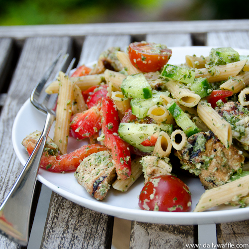 Chicken Tikka Pasta Salad – DailyWaffle