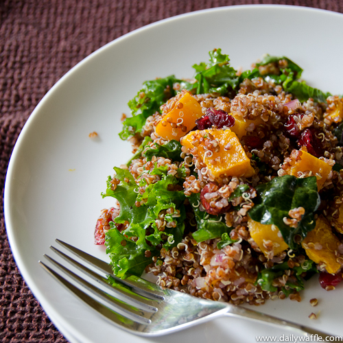 ... squash quinoa with roasted squash quinoa salad with butternut the