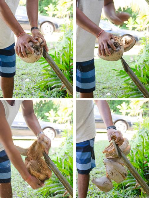 cracking coconut kauai