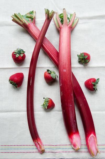 strawberry and rhubarb | dailywaffle