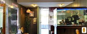 wong's interior_google