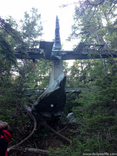 Canso plane hike tofino| dailywaffle