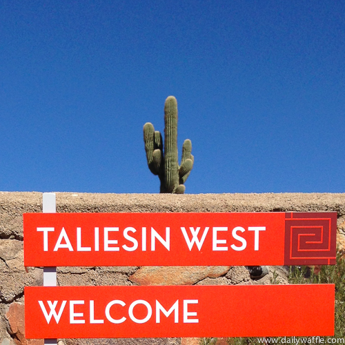 taliesin west sign| dailywaffle