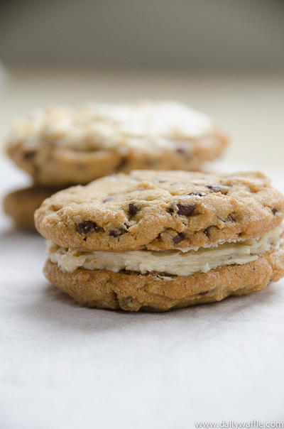 chocolate chip cookies miso buttercream sandwich | dailywaffle