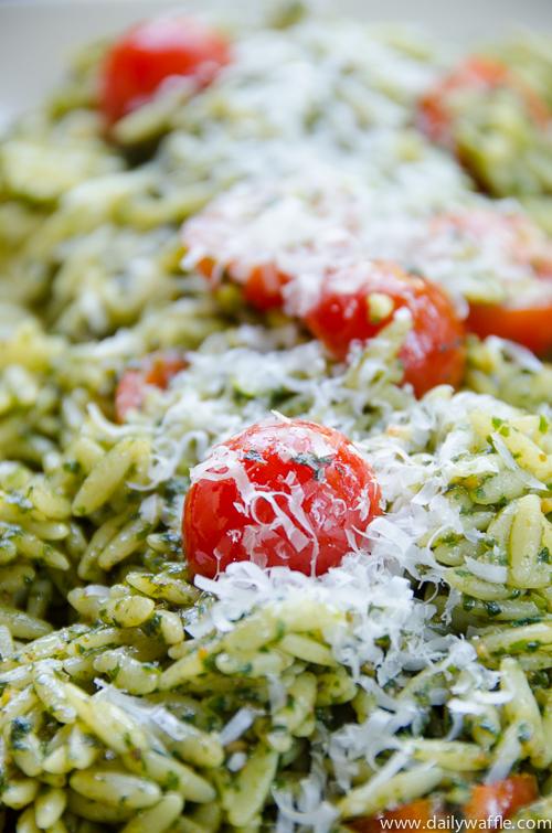 basil pesto orzo salad |dailywaffle