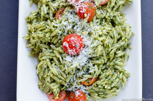 basil pesto orzo salad  dailywaffle